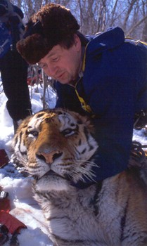 Zhenya the tiger, with researcher